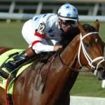 Come scommettere sulle corse dei cavalli